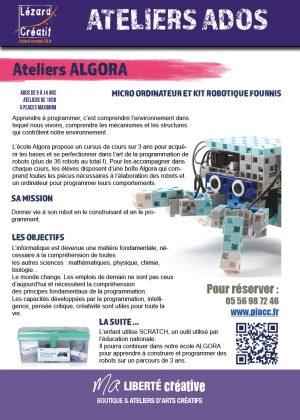 2018-07 Programme stages ado ALGORA