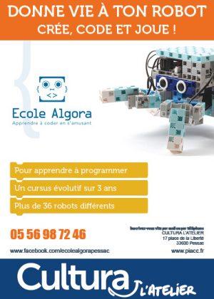 FLYERS 105x148 PRESENTATION ECOLE ALGORA V2
