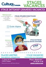 Ateliers stages grandes vacances et ateliers de juin_STA3